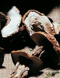 Рагу с грибами овощное
